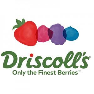 driscolls-client