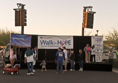 walk for hope copy